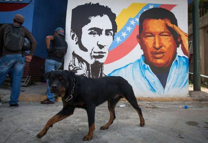 Los venezolanos viven la enfermedad y ausencia del presidente con opiniones divididas. (EFE)