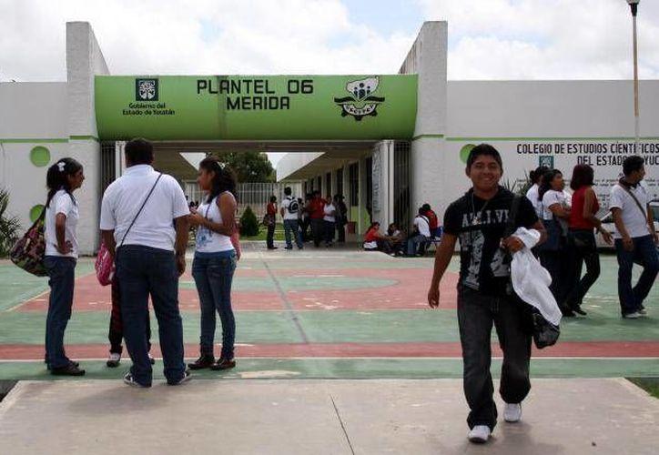 Los jóvenes estudiantes de los seis planteles del Cecytey participarán en el XVII Festival del Arte y la Cultura. (Archivo/SIPSE)