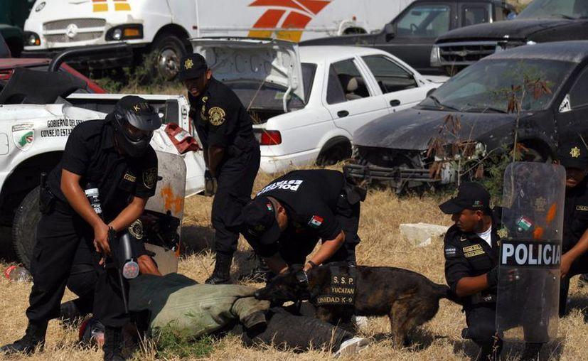 Yucatán fue reconocido como el Estado más seguro del país. (Milenio Novedades)