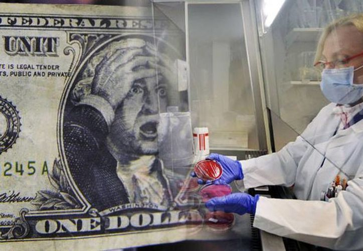 Se determinó que los microbios descubiertos en los billetes de dólar causan acné, úlceras gástricas, neumonía, intoxicación alimentaria e infecciones por estafilococo, entre otras enfermedades. (Agencias)