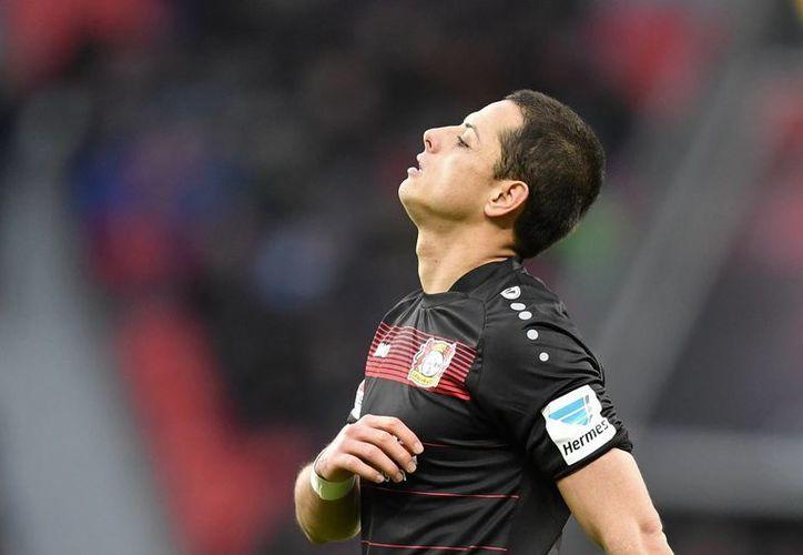 Javier 'Chicharito' Hernández y el Bayer Leverkusen salieron este sábado con la pólvora mojada. El equipo del mexicano cayó 0-2 ante el Mainz. (AP)