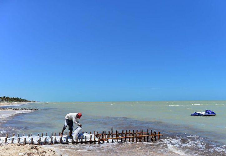 Inspectores de Profepa verificarán las obras que modifican la morfología costera, como los espigones. (Milenio Novedades)