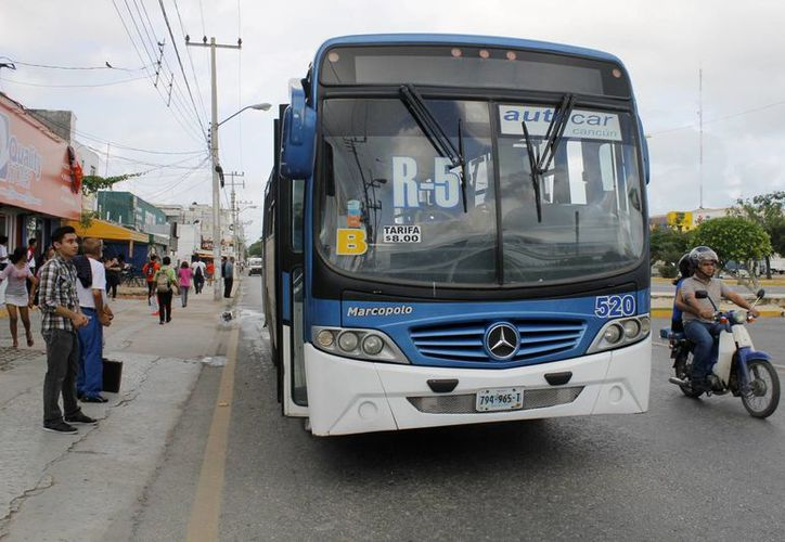 Durante 2015 la empresa Autocar realizó 50 renovaciones de vehículos para mejorar el servicio en el municipio de Benito Juárez. (Yajahira Valtierra/SIPSE)