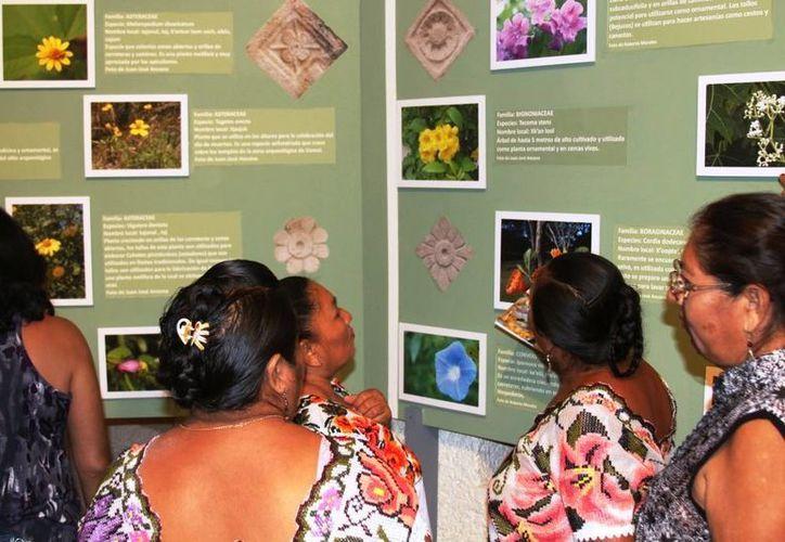 Mujeres mayas de la zona de Uxmal admiran la exposición sobre la biodiversidad en esa zona arqueológica. (SIPSE)