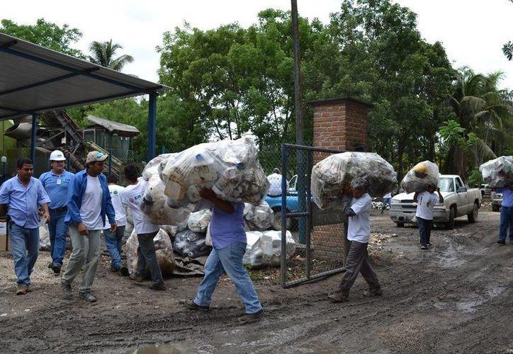 En la ribera del río Hondo se instalan  cinco centros de acopio primario. (Edgardo Rodríguez/SIPSE)