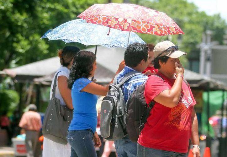 Los tres estados de la Península de Yucatán son afectados por el fenómeno denominado como Canícula. (Milenio Novedades)