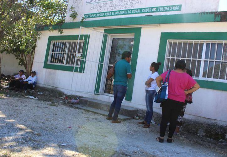 Casi a diario viene gente de la zona maya a las oficinas del Cader. (Sara Cauich/ SIPSE)