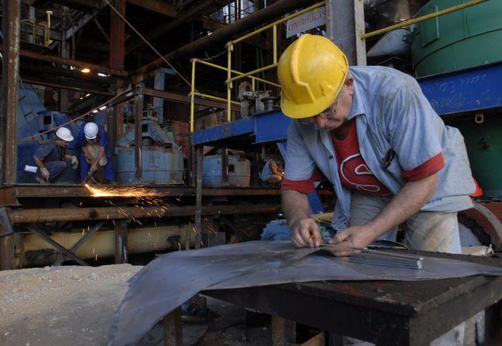 Se les pago en tiempo y forma a 550 empleados de la factoría. (Carlos Castillo/SIPSE)