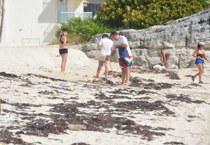 Más de 15 cancunenses apoyaron en las actividades de limpieza. (Luis Soto/SIPSE)