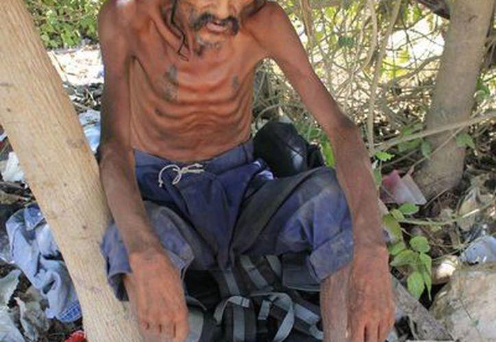 Estudios médicos reportaron que solo presenta un alto grado de desnutrición y abandono. (Harold Alcocer/SIPSE)