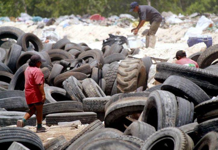 Diversas acciones se llevan a cabo en el Estado para reducir los efectos del cambio climático, entre ellos, la separación de residuos en el basurero municipal. (Redacción/SIPSE)