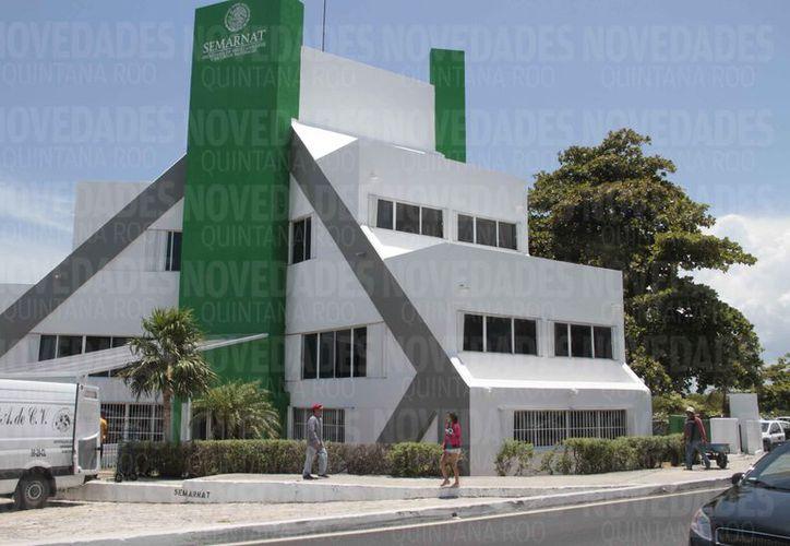 La Semarnat avaló tres proyectos para hoteles y condominios. (Redacción)