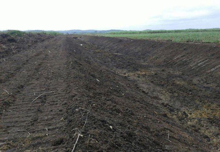 La obra, construida son recursos de la Sagarpa, ya tiene un 90% de avance. (Foto: Juan Rodríguez/SIPSE)