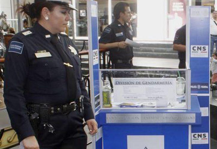 Quintana Roo recibe apoyo de la Fiscalía en delitos cebernéticos de Yucatán , ya que en el estado no se cuenta con dicha unidad. (Sergio Orozco/SIPSE)