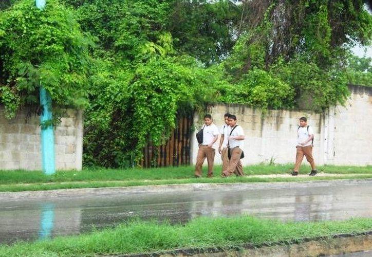 Se espera que las lluvias continúen en la capital de 24 a 48 horas con la misma intensidad. (Harold Alcocer/SIPSE)