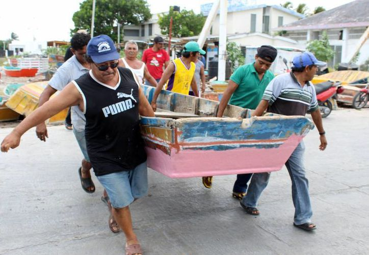 La veda, es una medida importante para la conservación del mero en la zona. Imagen de contexto de un grupo de pescadores mientras cargan una embarcación para su resguardo. (Milenio Novedades)