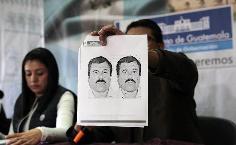 """Detalle del retrato del narcotraficante mexicano Joaquín """"El Chapo"""" Guzmán al ser presentado por las autoridades guatemaltecas. (EFE/Archivo)"""