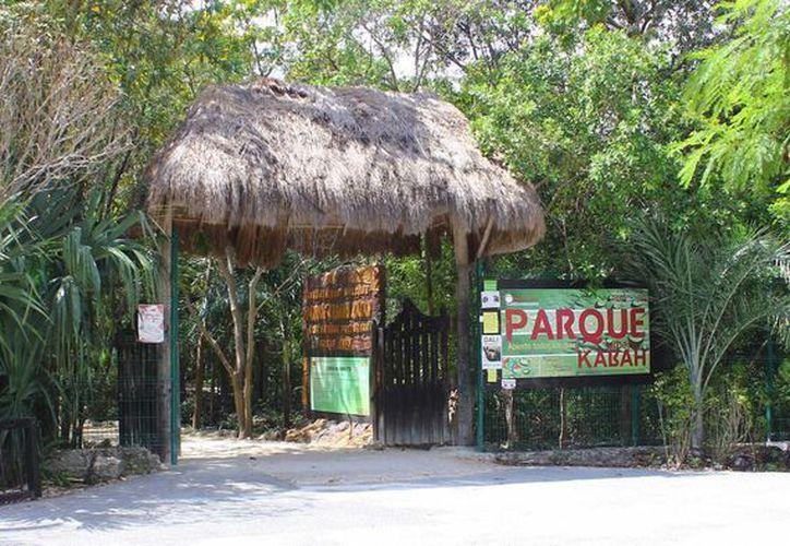 El Parque Urbano Kabah se encuentra en el cruce de las avenidas Kabah y Nichupté en Cancún. (Redacción/SIPSE)