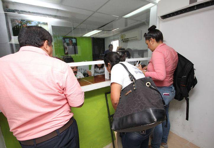 El permiso se tramita en la Dirección de Ecología municipal. (Cortesía)