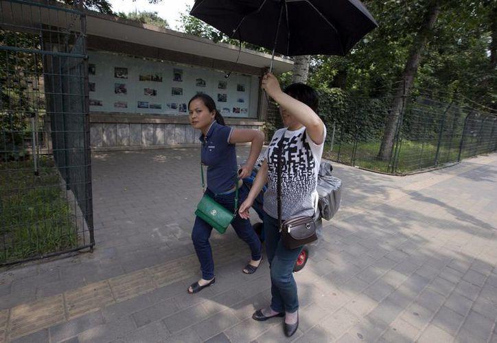China se ve afectada de forma recurrente por escándalos alimenticios. (Agencias)