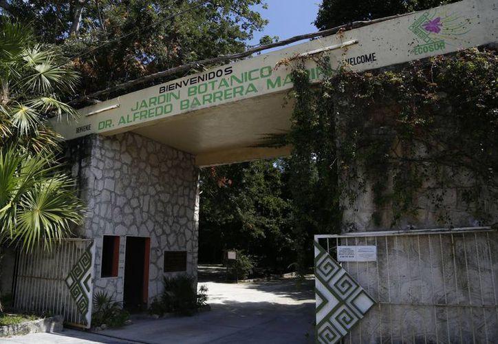 El jardín botánico es administrado por el Colegio de la Frontera Sur. (Redacción/SIPSE)