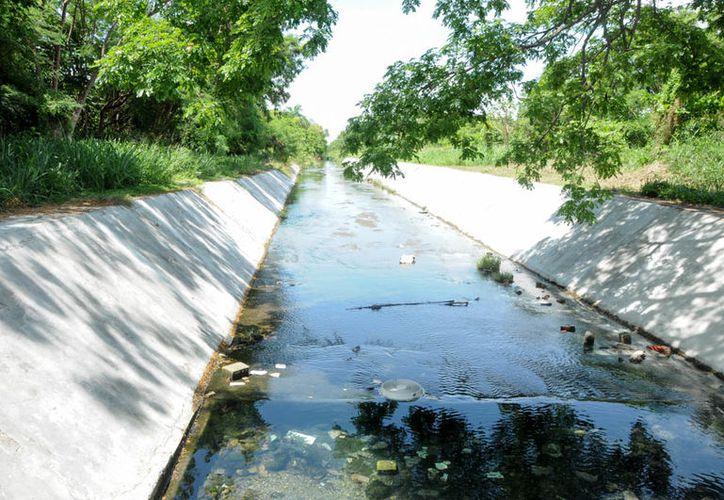 La ciudadanía debe evitar tirar la basura en la vía pública. (Foto: Redacción / SIPSE)