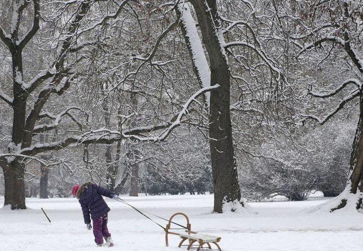 Una joven tira de un trineo en un parque cubierto de nieve en Praga, República Checa, el 17 de enero ded 2016. Tormentas de nieve azotaron varias zonas de Europa del Este este fin de semana. (AP Photo/Petr David Josek)