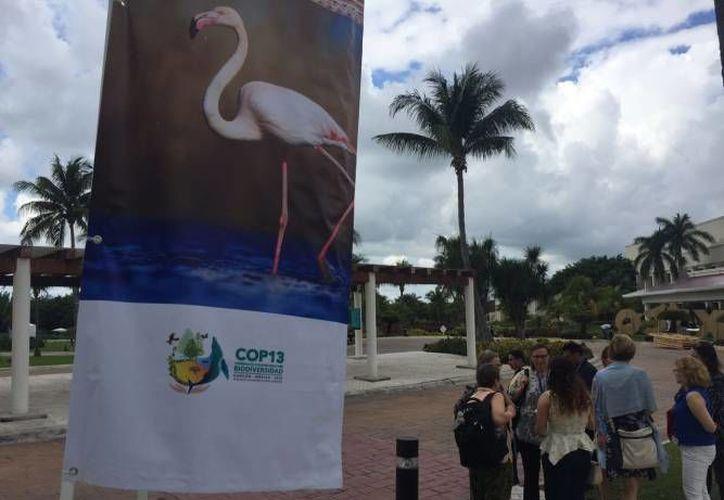 Han recibido alrededor de 250 voluntarios diarios en la Conferencia. (Foto: Contexto/ SIPSE)