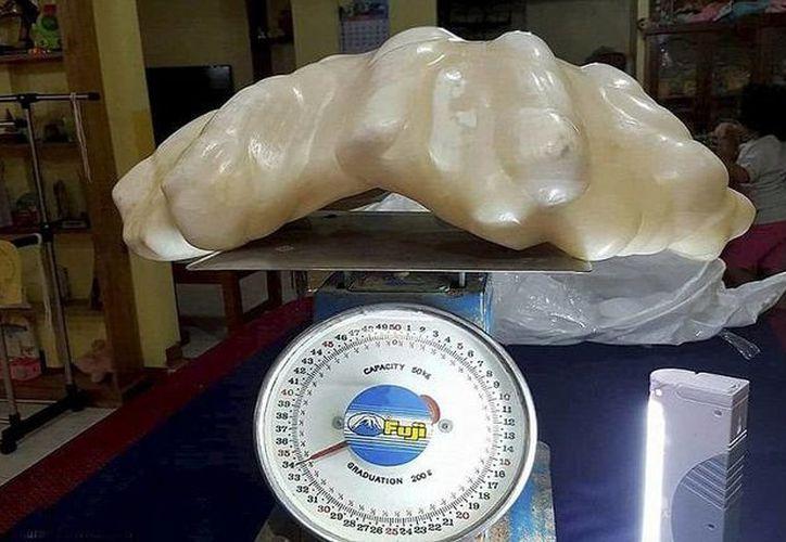 El objeto precioso no tiene la forma esférica común de una perla, sino que adquirió la forma de la concha que la albergaba. (Aileen Cynthia Amurao/SWNS.com)