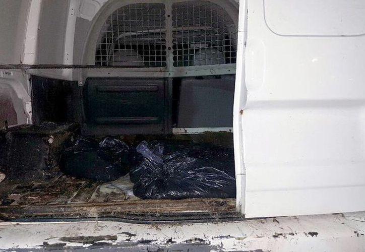 En menos de 12 horas, las autoridades decomisaron casi 300 kilogramos de pepino de mar, especie en veda permanente. La imagen, de una camioneta que transportaba pepino de mar, está utilizada solo como contexto. (Milenio Novedades)