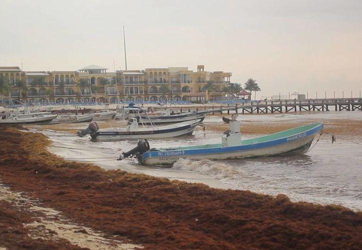 El documental Erosión cuenta con una banda sonora realizada por 'Jaguarmaister', banda de música experimental de Playa del Carmen. (Cortesía)