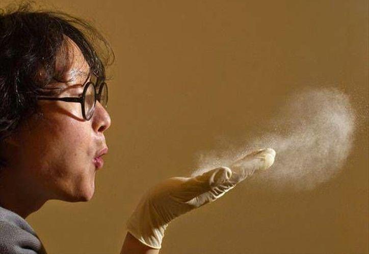 Un grupo de científicos encontró 9 mil diferentes tipos de microbios en el polvo de los hogares. (Contexto/Internet)