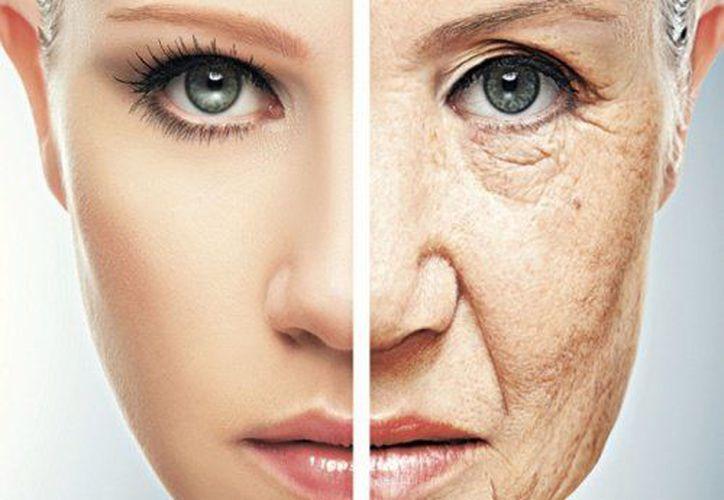 Una dieta rica en antioxidantes puede ayudar a prevenir o retrasar el envejecimiento. (Contexto/Internet).