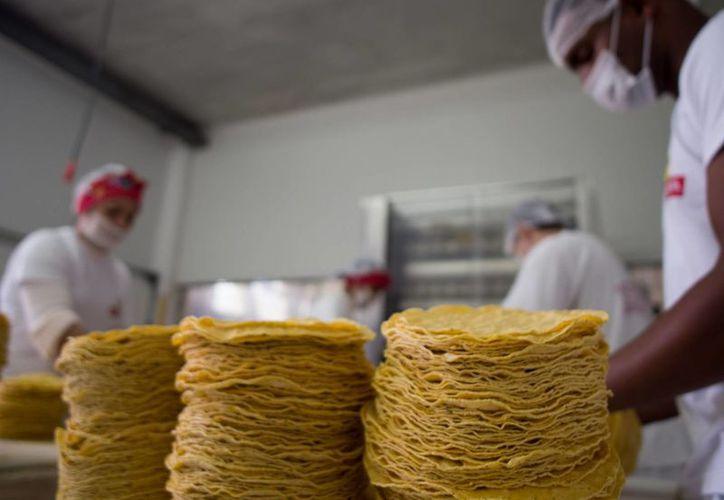 Un investigador del Cinvestav ganó el Premio Nacional en Ciencia y Tecnología de Alimentos 2015 gracias a que desarrolló unas microcápsulas para retener los nutrientes de las tortillas. (Archivo/Notimex)