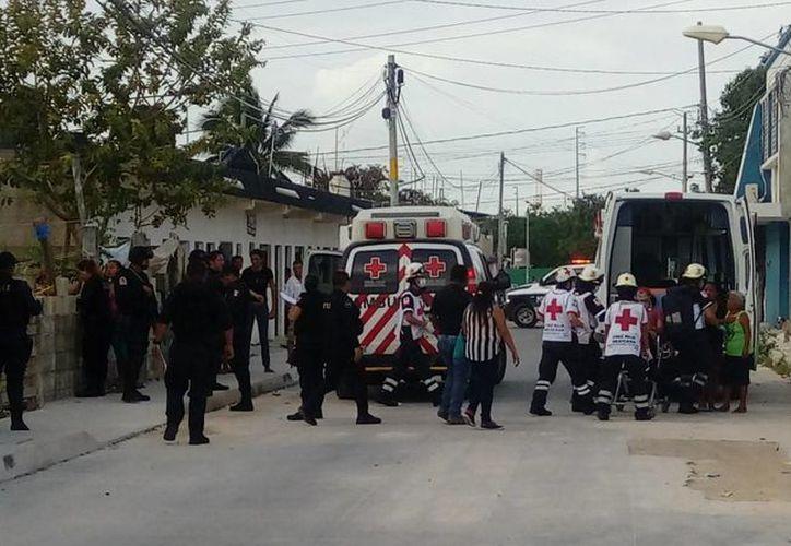 El ataque se registró la tarde del pasado domingo, en un domicilio de la Supermanzana 76. (Eric Galindo/SIPSE)