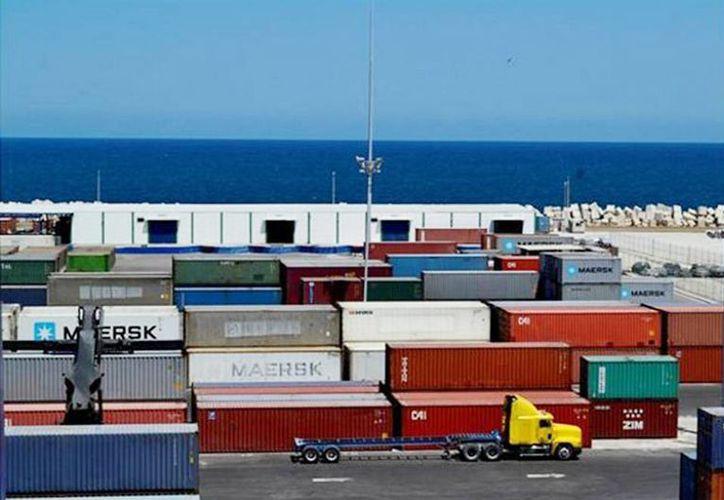 Al parecer el cargamento prohibido estaba en barriles dentro de un contenedor, en el puerto de altura de Progreso. (Milenio Novedades)