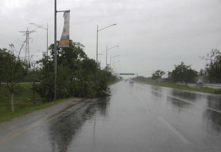 La depresión tropical número 2 generó daños en infraestructura de la CFE en Yucatán. (Juan Albornoz/SIPSE)