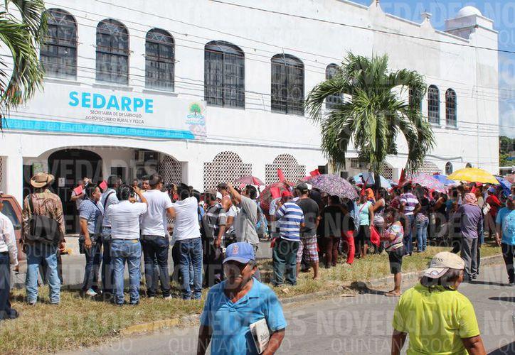 Cerca de mil antorchistas de la zona sur del Estado, marcharon y se manifestaron en las oficinas de la Sedarpe. (Joel Zamora/SIPSE)