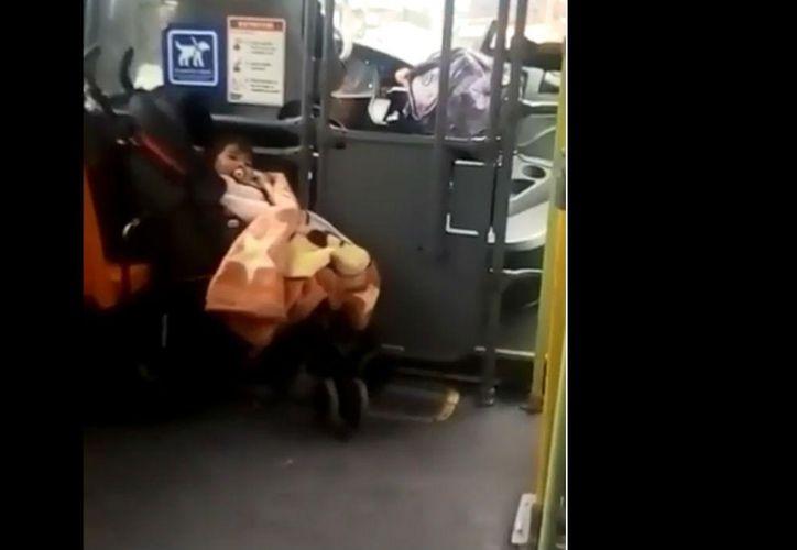La pequeña estaba en la carriola, detrás del asiento de la conductora. (Internet)