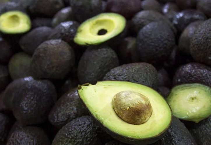 Se constató que el kilo del fruto verde alcanzó un precio de 70 pesos. (Archivo/SIPSE)