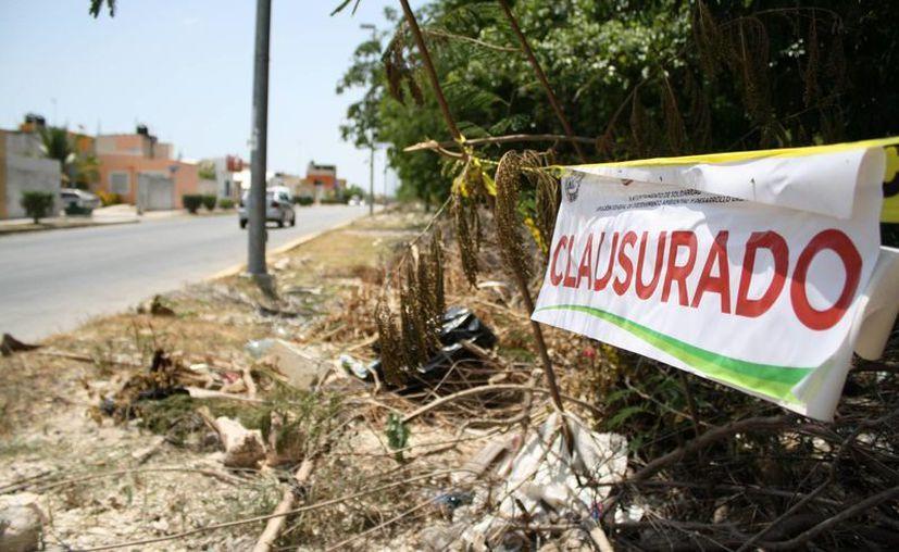 Continúan las obras de 'desmonte' y quema en predio clausurado. (Octavio Martínez/SIPSE)