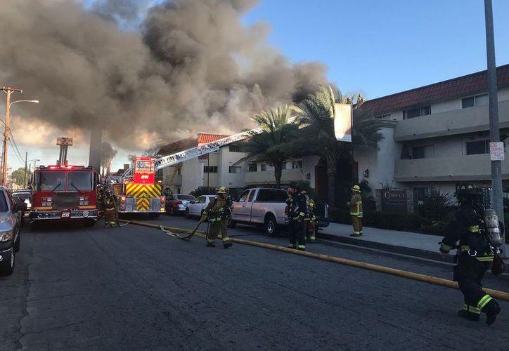 Los hechos ocurrieron en los Ángeles California, en un complejo de apartamentos. (Contexto/ Internet)