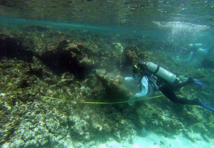 la carga excesiva de nutrientes en el mar se debe a las actividades humanas no controladas, como el turismo masivo. (Paola Chiomante/SIPSE)