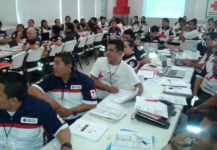 La captura mediante el sistema digital puede ofrecer información a la población. (Victoria González/SIPSE)