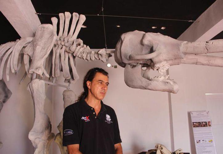 Eugenio Aceves, director de proyectos del Instituto de la Prehistoria de América, junto a una réplica de una especie extinta. (Rossy López/SIPSE)