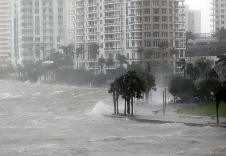 El poderoso huracán 'Irma' volvió a perder fuerza. (AP).