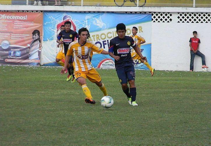 Para la siguiente semana el conjunto de Pioneros de Cancún estará de visitante a Pumas Naucalpan. (Ángel Mazariego/SIPSE)