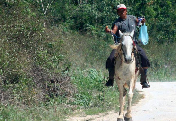 En la entidad hay una cifra de 28 mil campesinos en condiciones críticas. (Harold Alcocer/SIPSE)