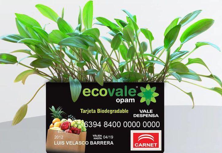 Estudios realizados indican que la mayoría de los beneficiarios usan los vales de despensa para apoyar sus gastos en alimentación. (ecovale.com.mx)