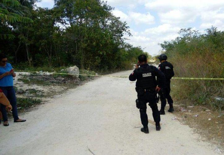 El hallazgo del cuerpo fue en la Región 213. (Eric Galindo/SIPSE)
